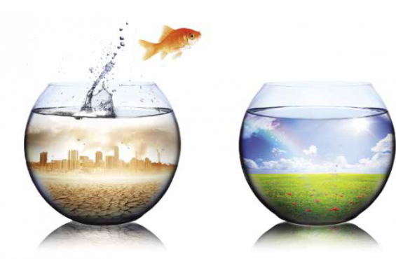 Fish jumping into a more sustainable world